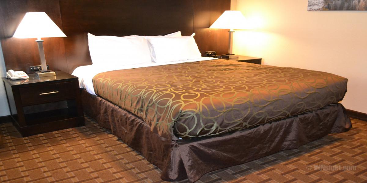 Room 607 - Queen Standard