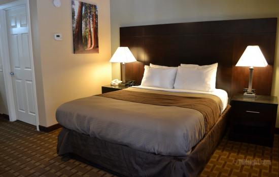 Room 603 - Queen Standard