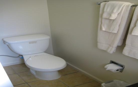 Cabin 609 Bathroom